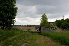 Reserva de naturaleza de madera de la cabina, het Vinne, Zoutleeuw, Bélgica Fotos de archivo