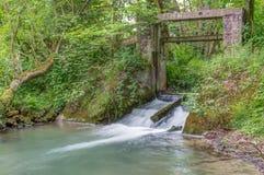 Reserva de naturaleza, Ry du Pré Delcourt, Chaumont-Gistoux foto de archivo