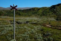 Reserva de naturaleza Valadalen en Suecia septentrional imagen de archivo