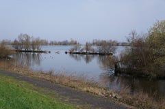 Reserva de naturaleza de Vooroever en los Países Bajos Imagenes de archivo