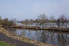 Reserva de naturaleza de Vooroever en los Países Bajos Imágenes de archivo libres de regalías