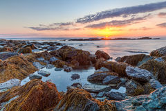 Reserva de Sachuest del paisaje marino de la salida del sol Imagen de archivo