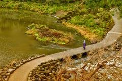 Reserva do desfiladeiro da catarata Fotos de Stock Royalty Free