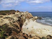 Reserva do mar de Gedor Fotografia de Stock Royalty Free