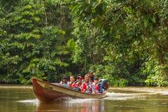 Reserva dos animais selvagens de Cuyabeno, província de Sucumbios, Equador, fevereiro foto de stock royalty free
