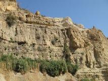 Reserva Ein Gedi, Israel Fotografia de Stock Royalty Free