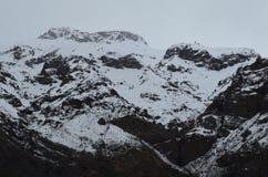 Reserva nacional de RÃo Blanco, Chile central, un alto valle de la biodiversidad en Los los Andes fotos de archivo libres de regalías