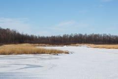 Reserva nacional del lago rice en invierno Fotos de archivo