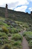 Reserva Nacional Lago Jeinimeni, nära Lago general Carrera i sydliga Chile Fotografering för Bildbyråer