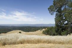 Reserva natural Fotos de Stock