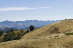 Reserva natural Foto de Stock Royalty Free