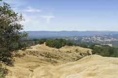 Reserva natural Imagens de Stock Royalty Free