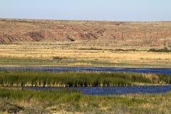 Reserva natural amarga do nacional do lago Fotos de Stock Royalty Free