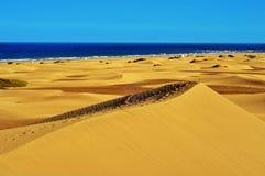 Reserva natural das dunas de Maspalomas, em Gran Canaria, Espanha imagem de stock