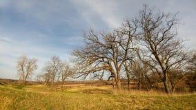 Reserva natural de cuatro estaciones - el lago Lemán, WI imagen de archivo libre de regalías