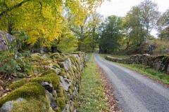 Reserva natural de Höö Fotos de Stock