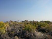 Reserva natural del mono del lago estado de la toba volcánica foto de archivo libre de regalías