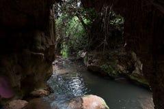 Reserva natural do córrego de Amud em Israel do norte imagens de stock royalty free