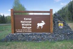 Reserva natural do nacional de Kenai Foto de Stock Royalty Free