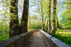 Reserva natural do nacional de Nisqually Fotos de Stock Royalty Free