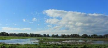 Reserva natural do nacional de Ridgefield Fotografia de Stock Royalty Free