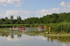 Reserva natural do pantanal de Hanshiqiao no Pequim Fotografia de Stock Royalty Free