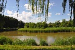 Reserva natural do pantanal de Hanshiqiao no Pequim Imagem de Stock