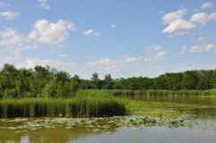 Reserva natural do pantanal de Hanshiqiao no Pequim Foto de Stock