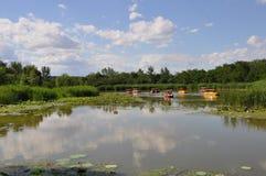 Reserva natural do pantanal de Hanshiqiao no Pequim Foto de Stock Royalty Free