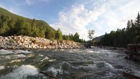 Reserva natural rio Altai da montanha Paisagem bonita nas montanhas rio áspero, o conceito da liberdade vídeos de arquivo