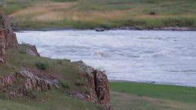 Reserva natural rio Altai da montanha Paisagem bonita nas montanhas rio áspero, o conceito da liberdade filme