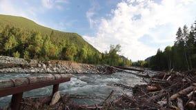 Reserva natural rio Altai da montanha Paisagem bonita nas montanhas rio ?spero, o conceito da liberdade vídeos de arquivo