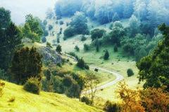 Reserva natural Zwing com rochas e árvores no vale Imagem de Stock