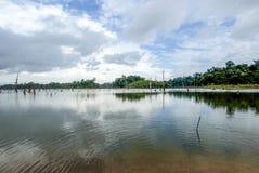 Reservatório de Brokopondostuwmeer visto de Ston EIland - Suriname Imagem de Stock