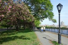 Reservatório de Central Park Imagem de Stock Royalty Free
