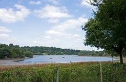 Reservatório de madeira 1 do Weir Fotografia de Stock