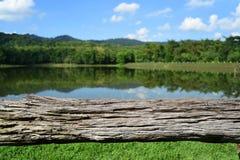 Reservatório perto da floresta Fotografia de Stock