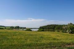 Reservatórios e shelterbelts do campo fotografia de stock