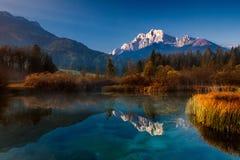 Reservat Zelenci - Triglav Slowenien stockfoto