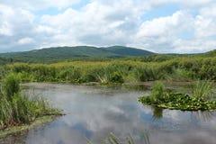 Reserve Arkutino - Bulgaria Stock Photos