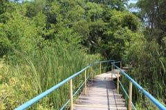 Reserve Arkutino Bulgaria Stock Image