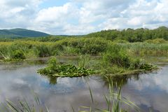 Reserve Arkutino - Bulgarien Lizenzfreie Stockfotografie