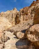 Reserve Ein-gedi in Israel Lizenzfreie Stockbilder