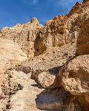 Reserve Ein gedi in Israel Royalty Free Stock Images