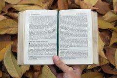 Reserve el primer (de la biblia) en un fondo de las hojas que llevan a cabo las manos Fotos de archivo libres de regalías