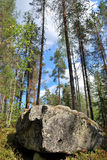 Reserve Kolovesi. Finland Stock Images