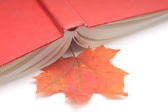 Reserve las hojas de otoño del wih Fotos de archivo