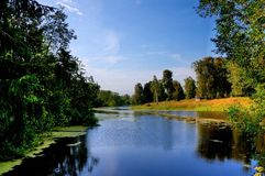 The reserve of a name of Pushkin, near Moscow, Russia. Royalty Free Stock Photo