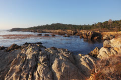 The  Reserve Point Lobos Royalty Free Stock Photos