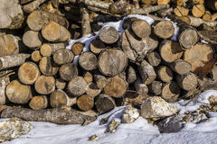 Reserves for the winter. Logs under snow with stones Stock Photos